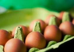 Mit jelentenek a számok a tojáson?