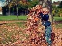 Vértezzük fel a családot az őszi megbetegedések ellen!