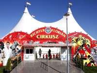 Kedvezményes jegyvásárlási lehetőség a Nemzeti Cirkuszba - csak olvasóinknak!